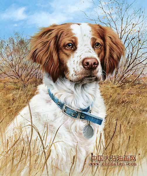 动物油画之狗--中国大芬油画网